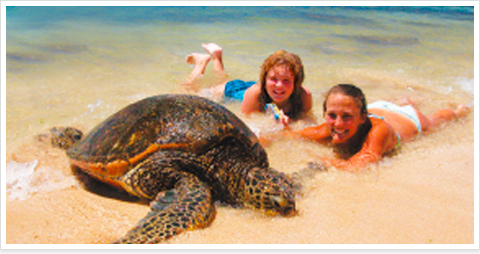 http://www.outdoor-hawaii.com/images/tour/tour006/tour_006_key.jpg